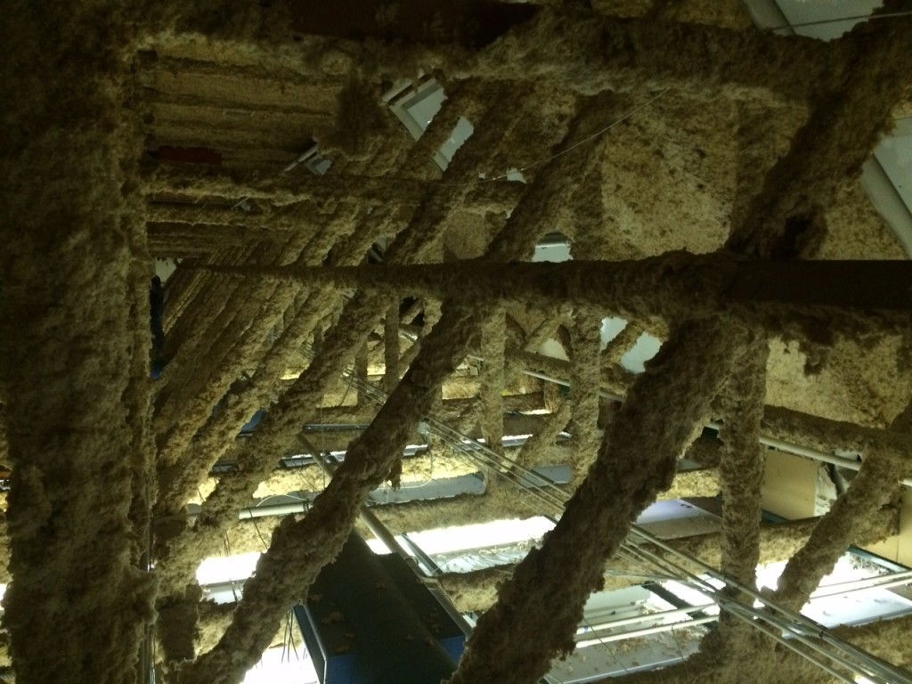 Building inspection find - fire insulated wooden trusses in a commercial building