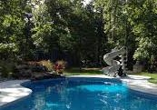 Swimming Pool Inspections