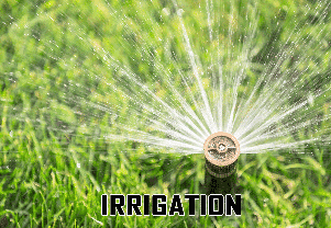Irrigation Inspections